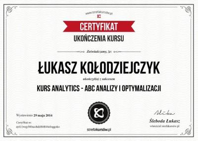"""Certyfikat ukończenia """"Kursu Analytics - ABC analizy i optymalizacji"""""""